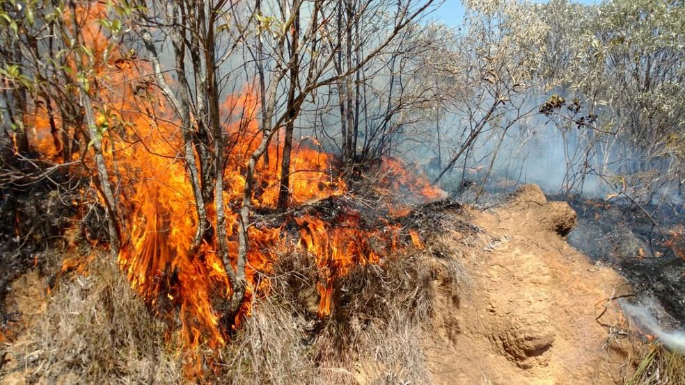 Incêndio começou na quarta-feira na Serra do Papagaio (Foto: Divulgação / Parque Estadual Serra do Papagaio)