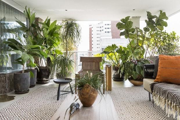 Como escolher plantas para a sua varanda (Foto: Divulgação)