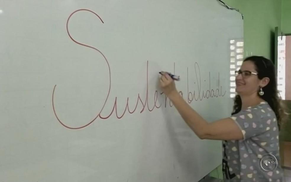 Professora abordou tema sustentabilidade com projeto (Foto: Reprodução/ TV TEM)