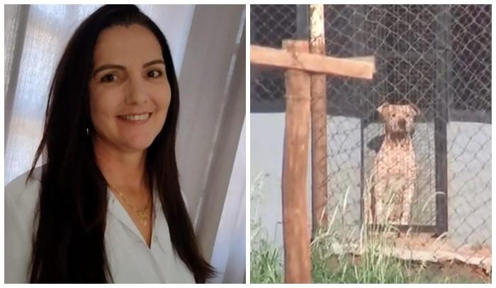 Caseiro atacado por pitbulls que mataram namorada deixa hospital após mais de 10 dias internado