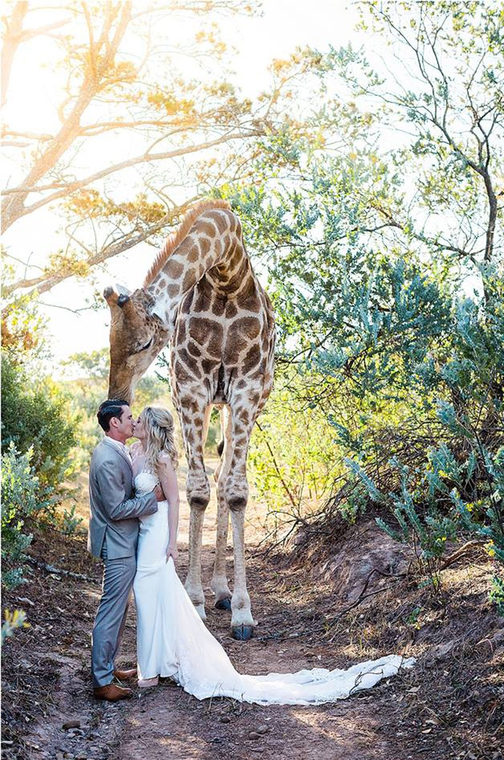 Girafa faz 'photobomb' em foto de casamento na África do Sul (Foto: Stephanie Norman Photography/Facebook)