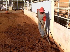 É trabalho que não acaba mais, diz o pedreiro Eurípedes Rodrigues (Foto: Chico Escolano/EPTV)