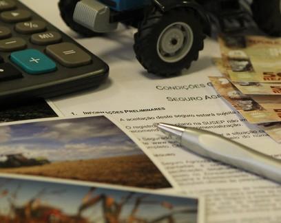 Contratação de seguro rural mais que dobra em 2020 no Brasil