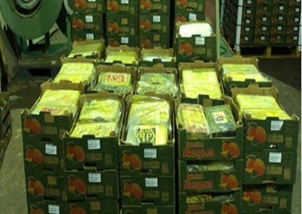 Cocaína era transportada por meios aéreos, rodoviários e marítimos, segundo PF — Foto: Polícia Federal/Divulgação