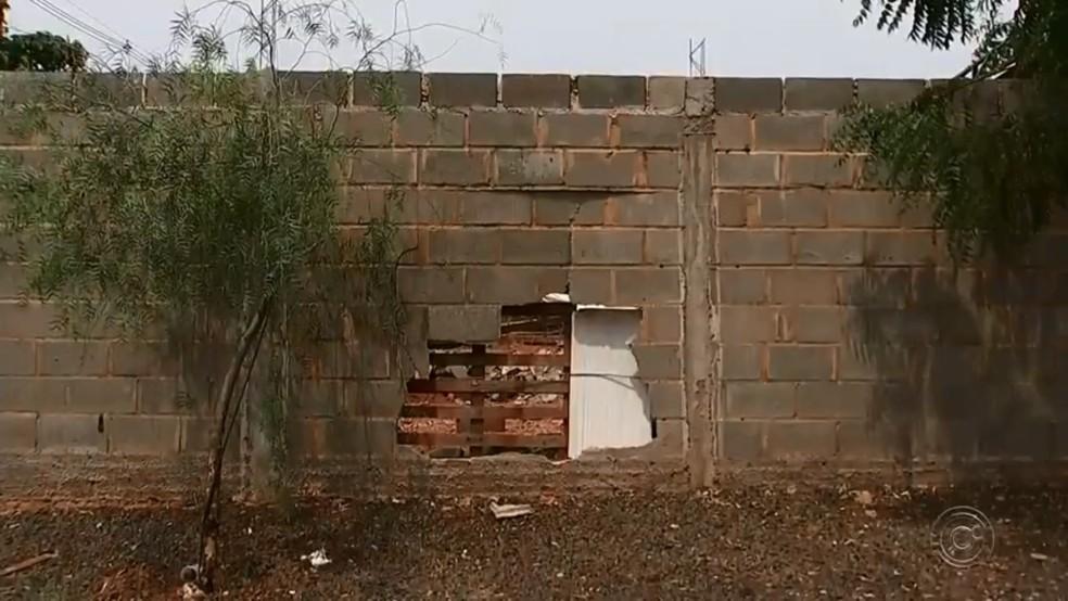 Motorista bateu carro em muro quando começou a ocorrência em Palestina — Foto: TV TEM/Reprodução