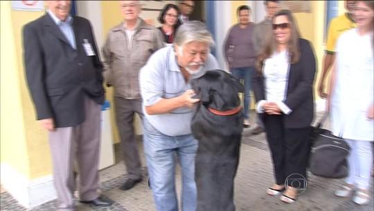 Cachorro fica na porta do hospital até o dono receber alta