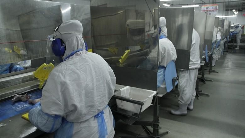 Frigoríficos da JBS na pandemia (Foto: JBS/Divulgação)