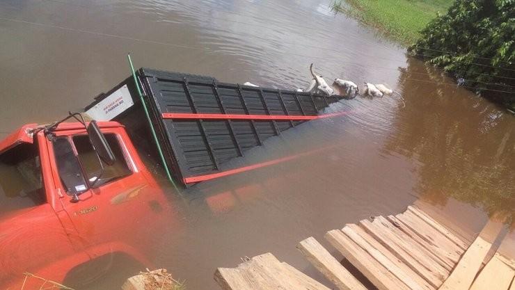 Caminhão e dois animais seguem submersos dois dias depois de caírem dentro de córrego em Jaru, RO