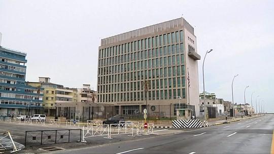 Cientistas dizem que grilos podem ter causado 'ataques sônicos' a diplomatas americanos em Cuba