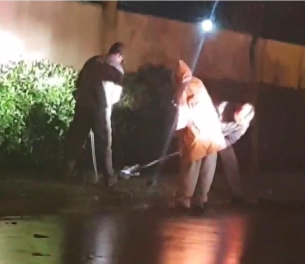 Defesa Civil e Corpo de Bombeiros fizeram várias tentativas de captura do jacaré que apareceu nas ruas de Paulínia (SP). — Foto: Reprodução EPTV
