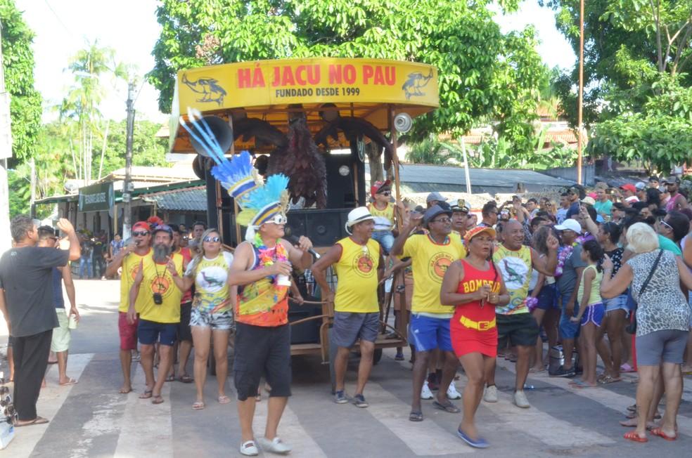 Blocos desfilaram no carnaval do 'cara limpa' na praça sete de Setembro em Alter do Chão (Foto: Fábio Cadete/G1)