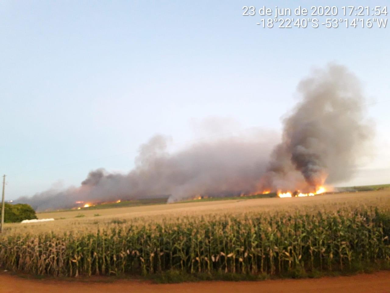 Usina é multada em quase R$ 300 mil após incêndio que danificou 294 hectares de canavial em MS