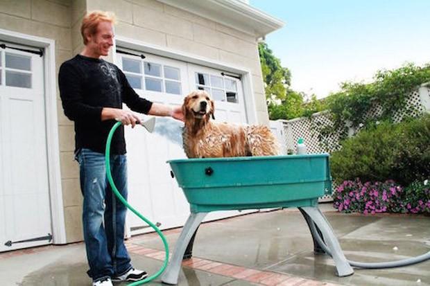 Dog shower: estrutura desmontável economiza espaço  (Foto: Pinterest/Reprodução)