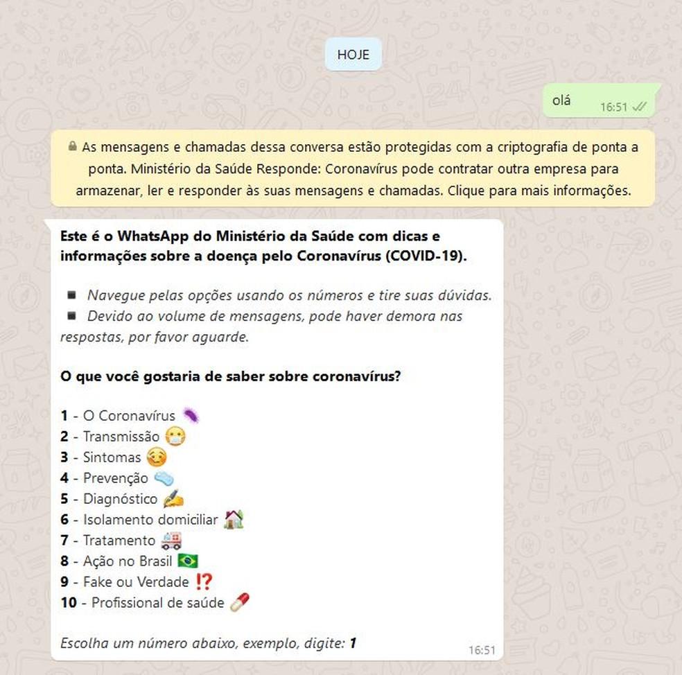 """Tela inicial de conversa com o perfil do """"Ministério da Saúde Responde"""" dentro do aplicativo WhatsApp — Foto: Reprodução"""