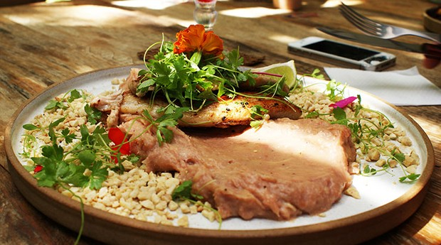 Casal cria food truck de comida saud vel faz sucesso for Cria de tilapia en casa