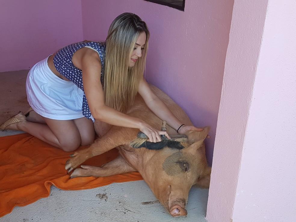 Paula, do BBB19, e sua porca Pippa — Foto: Gabriela Mouta/Gshow