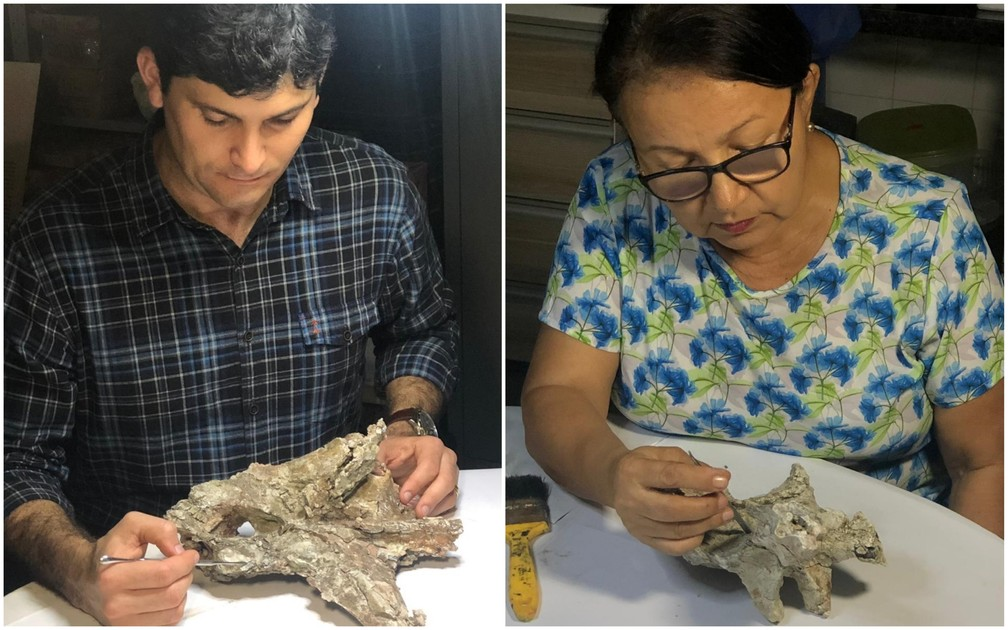 Rafael Lindoso e Agostinha Araújo participaram da pesquisa que descobriu o Itapeuassauros Cajapioenses — Foto: Sidney Pereira/TV Mirante