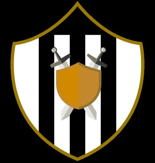VinSa FC