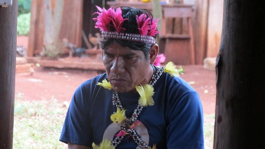 Pandemia da Covid-19 impacta tradições e costumes de 17 mil indígenas no Paraná: 'É um golpe na cultura', diz antropóloga