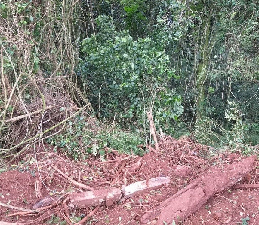 Vereador de Serranópolis do Iguaçu é preso suspeito de cometer crime ambiental, diz polícia - Noticias
