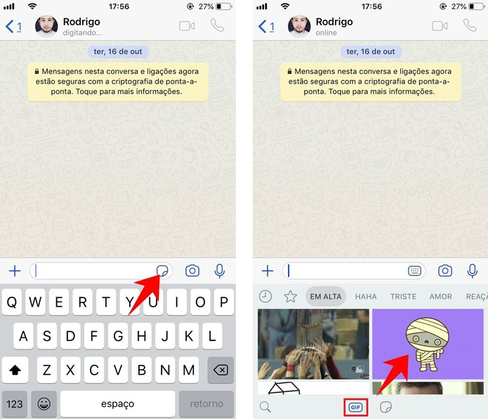 Enviando um GIF em uma conversa do WhatsApp  (Foto: Reprodução/Rodrigo Fernandes)