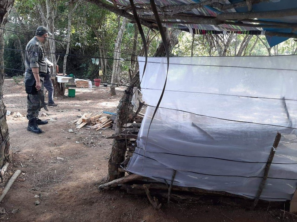 Operação impede invasão e desmatamento de área de proteção permanente em Macaé — Foto: Divulgação/Prefeitura de Macaé