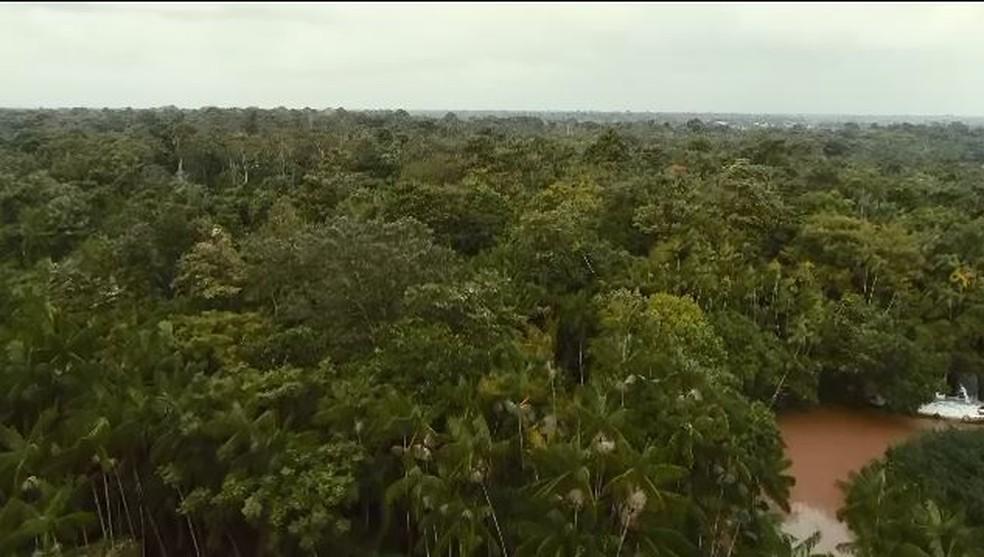 Menina foi encontrada a cerca de 2 quilômetros da casa onde mora — Foto: Rede Amazônica/Reprodução