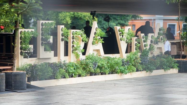 feira-viva-divulgação (Foto: Divulgação)