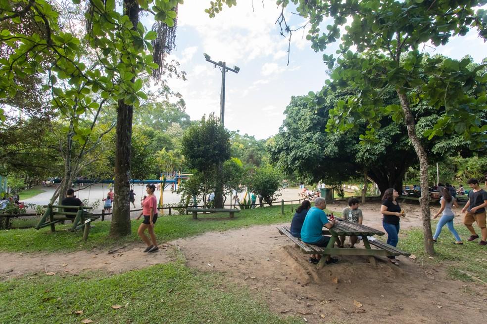 Área de piquenique no Parque Municipal do Córrego Grande atrai saguis pela oferta de alimentos — Foto: Celso Tavares/G1