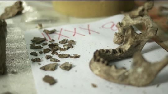 Crânio de Luzia é encontrado nos escombros do Museu Nacional, dizem pesquisadores
