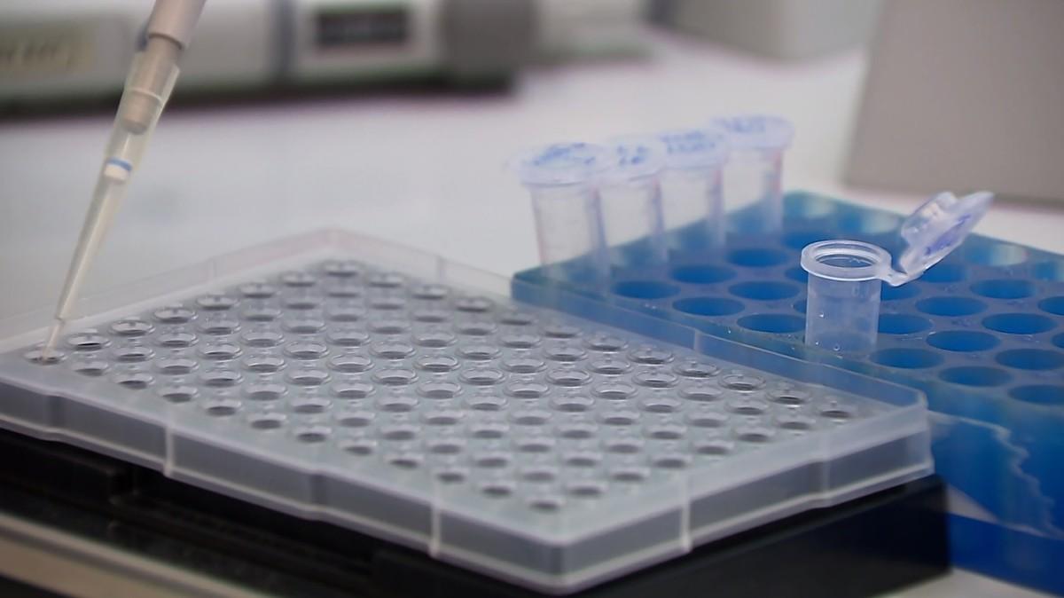 Covid-19: Secretaria Municipal da Saúde de Araraquara amplia testes em massa na população