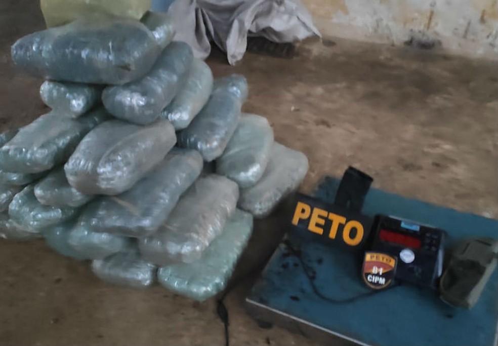 Mais de 60 kg de maconha são apreendidos em área de territórios quilombolas de Lauro de Feiras — Foto: Divulgação/SSP-BA