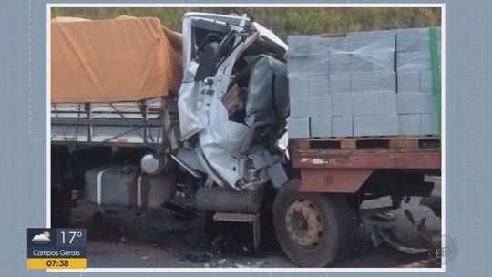 Motorista de caminhão morre ao bater em traseira de carreta na BR-459