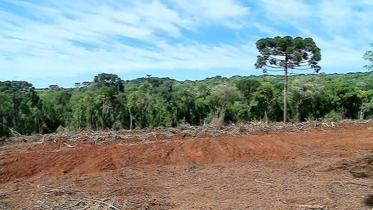 Polícia investiga participação de ex-prefeito em crime ambiental no RS