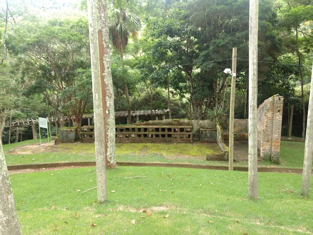 Ruínas de local onde eram criados coelhos na antiga fazenda onde atualmente funciona o Jardim Botânico da Universidade Federal de Juiz de Fora (UFJF) — Foto: Roberta Oliveira/G1