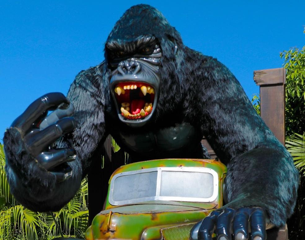"""""""Gorila"""" é atração no parque Beto Carrero World em Penha (SC) — Foto: Divulgação/Beto Carrero World"""