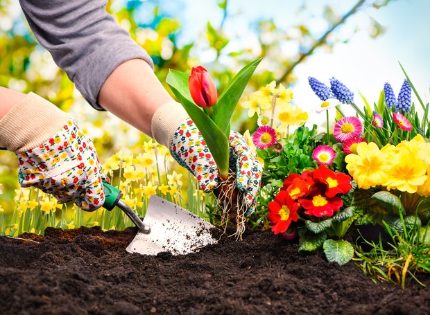 mulher-jardinagem-cuidando-de-plantas-flores (Foto: Thinkstock)
