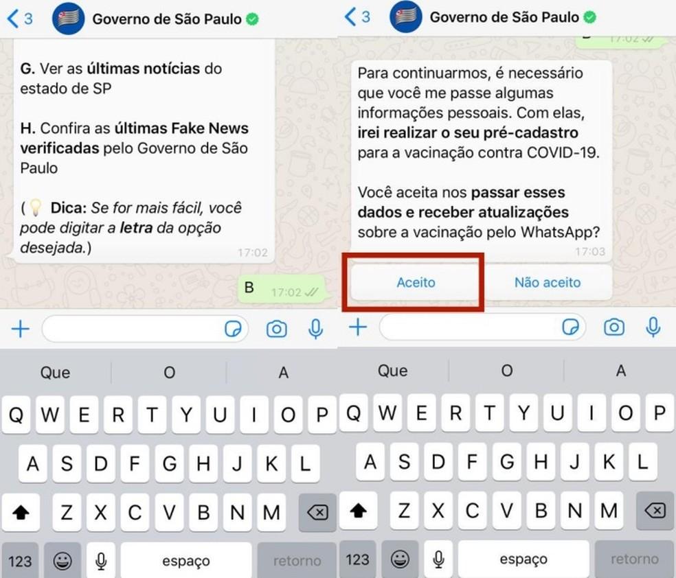 O chatbot traz diversas informações — Foto: Reprodução/Beatriz Maxima