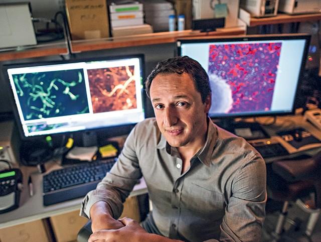 O brasileiro Alysson Muotri, de 44 anos, chefia o laboratório de pesquisas sobre o cérebro da Universidade da Califórnia em San Diego (Foto: Ilustração de Davi Augusto sobre foto de David Paul Morris)