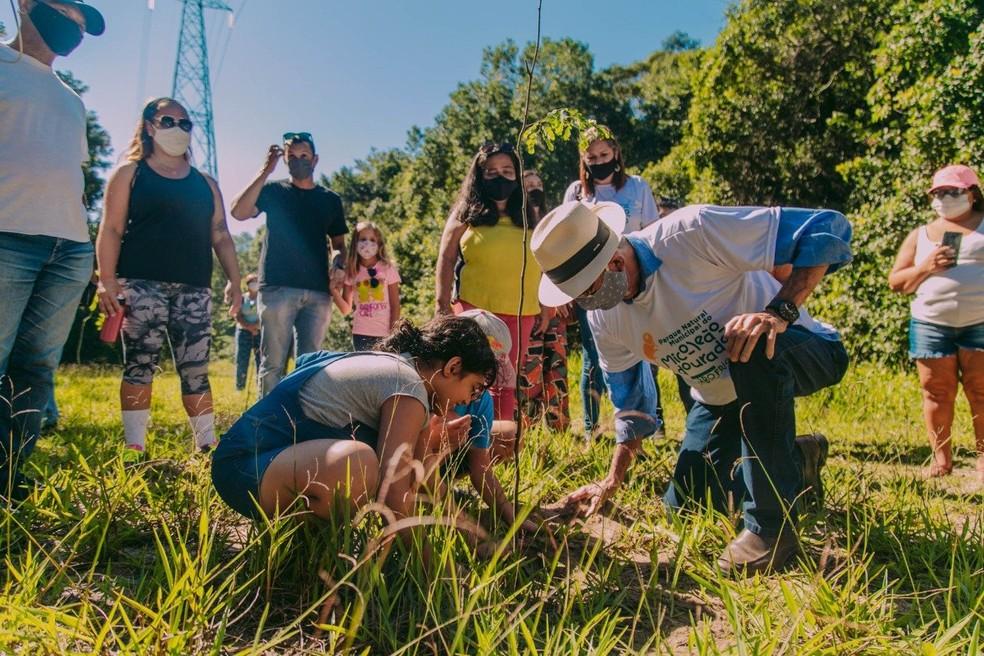 Inauguração da nova sede do Parque Natural Municipal do Mico-Leão-Dourado teve plantio de mudas nativas da Mata Atlântica em Cabo Frio — Foto: Divulgação