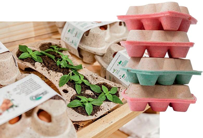 Porta-ovos fabricados com a fécula de mandioca (Foto: Divulgação)