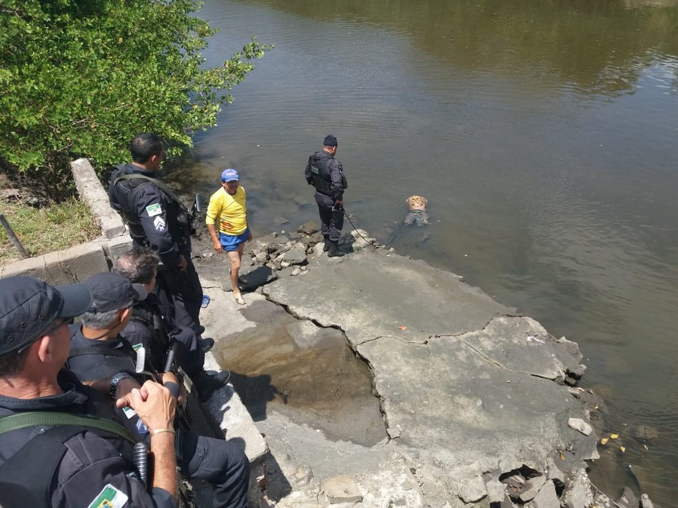 Tronco de Moisés Francisco da Silva foi encontrado pelos policiais em São Gonçalo do Amarante, Grande Natal — Foto: Divulgação/PM