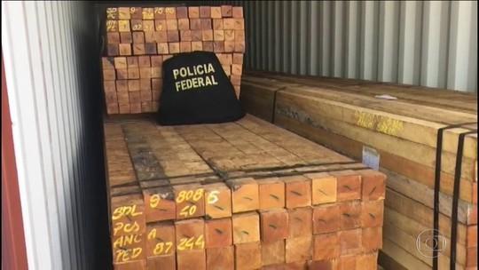 PF faz ação de combate à exploração ilícita de madeira da Amazônia