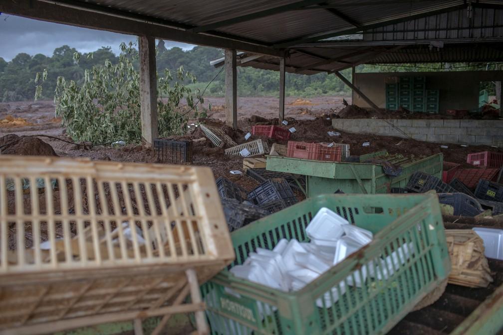 Mercado destruído pelo deslizamento de lama no Parque das Cachoeiras, depois do rompimento da barragem da Vale em Brumadinho. — Foto: Mauro Pimentel/AFP