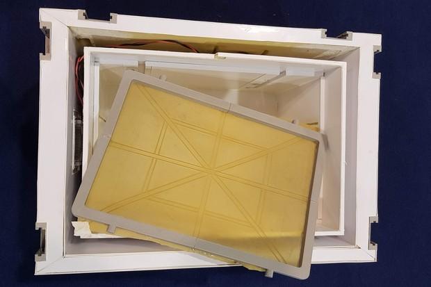 Berço dentro da embalagem é regulável, o que permite uma segurança maior do órgão transportado (Foto: Divulgação)