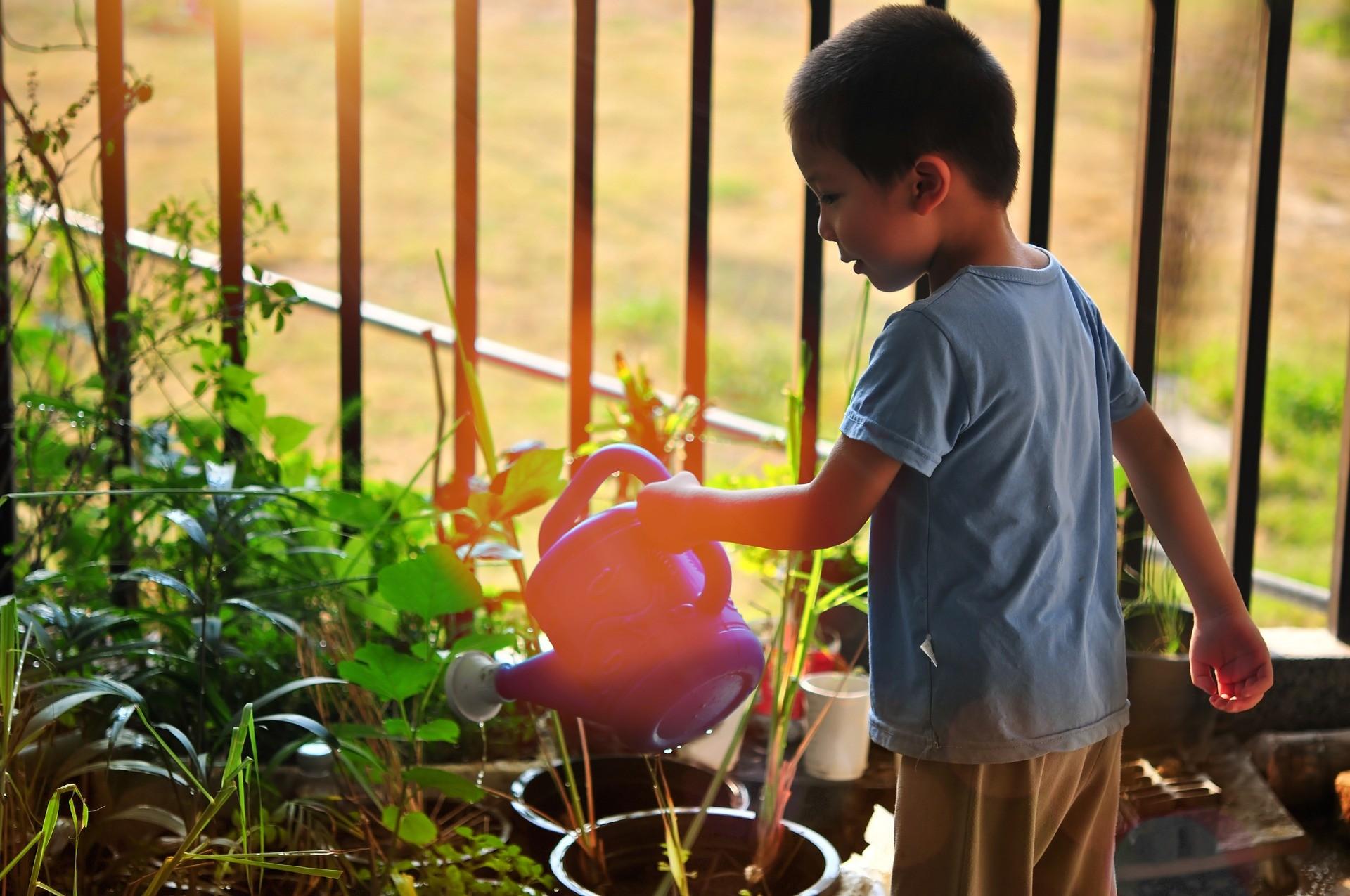 Compostar reduz o impacto do lixo e ensina às crianças sobre o ciclo da terra (Foto: Pixabay)