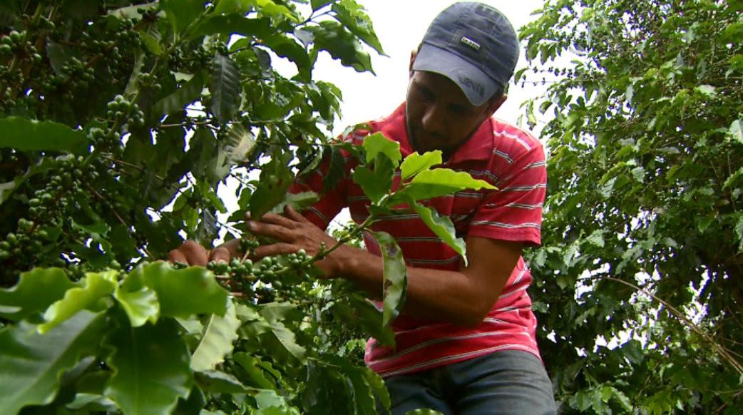 Agricultores familiares da região do baixo amazonas são orientados sobre acesso ao crédito fundiário