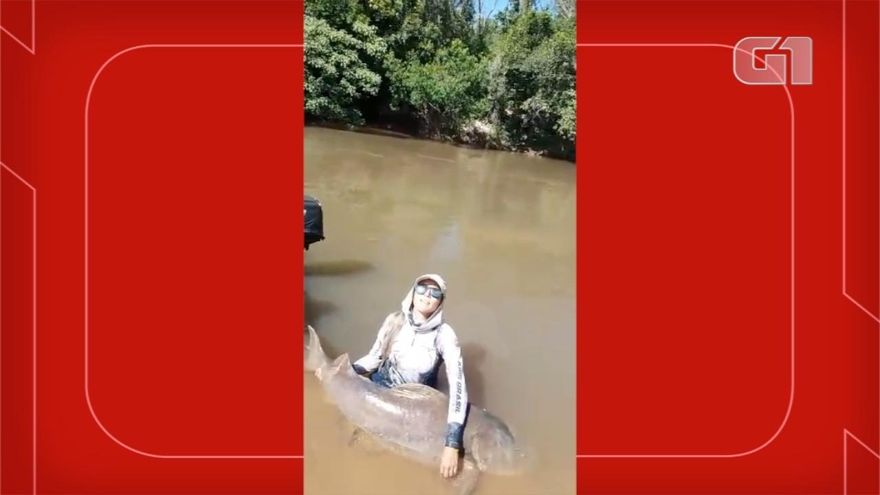 Dentista captura peixe de 80 quilos maior que ela em rio de MS.