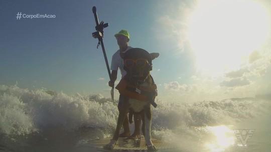 Dupla Augusto Martins e Parafina se prepara para o Mundial de Surfe para cachorro
