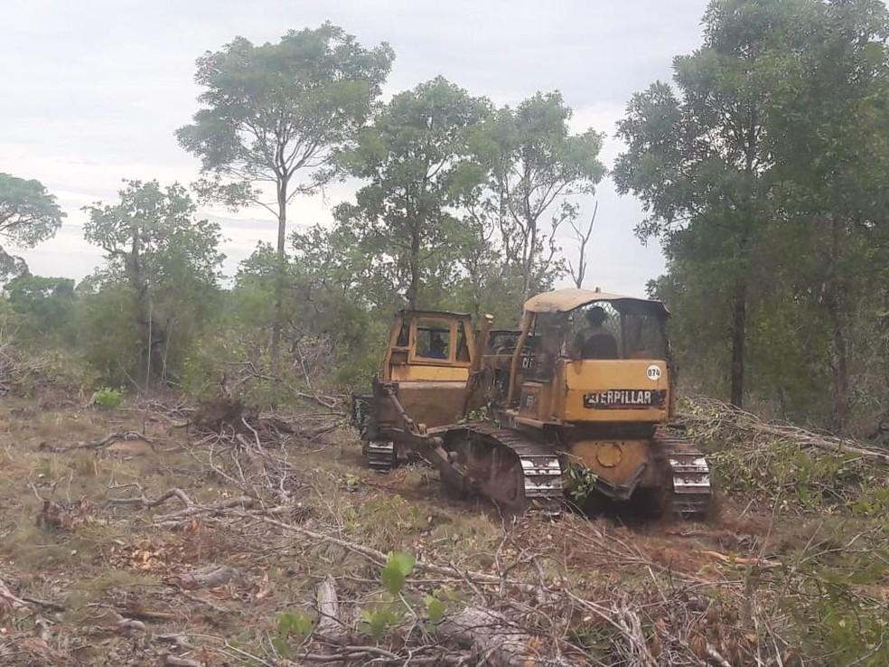 Área de desmatamento foi identificada por meio de um alerta na plataforma de monitoramento da Sema — Foto: Sema-MT/Assessoria